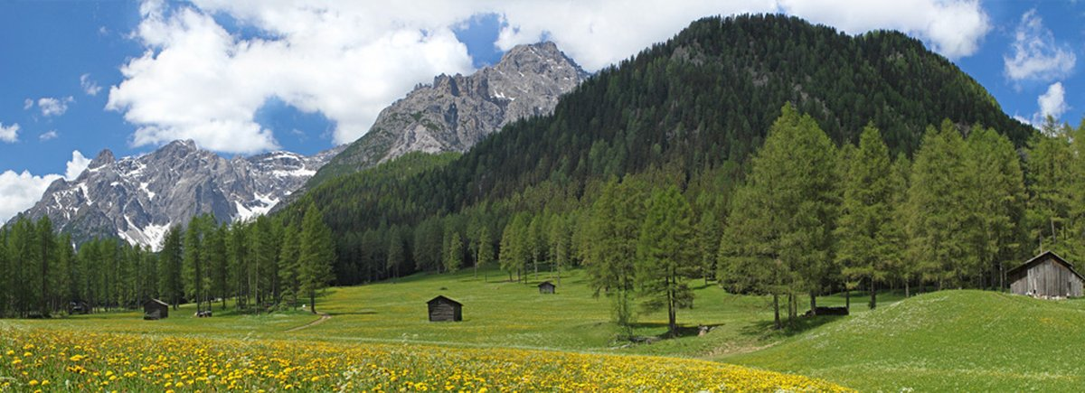 Val Pusteria Hotel  Stelle