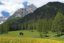 Primavera in Val Pusteria